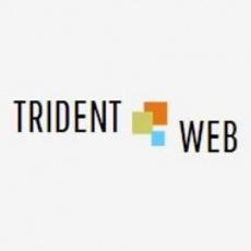 Trident Web Infoservices profile
