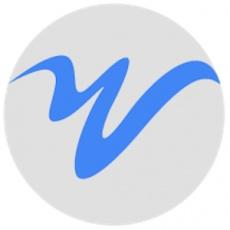 Web Strategies profile