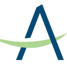 Ailerons IT Consulting Company LLC profile