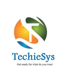 Techiesys It Solutions profile