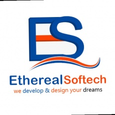 Ethereal Softech PVt. Ltd. profile