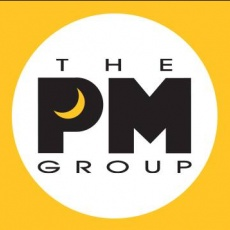THE PM GROUP profile