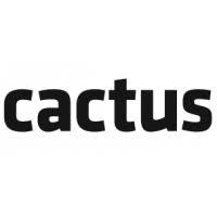 Cactus Creative Consultants Ltd profile