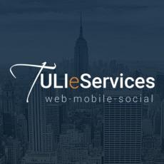 TULI eServices Inc profile