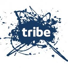 Tribe Communications profile
