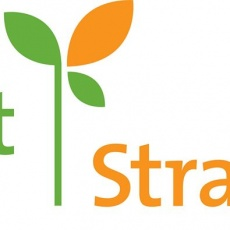 Sprout Strategies profile