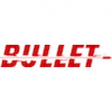 Bullet Consulting profile