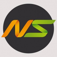 NOBLE STRATEGY profile