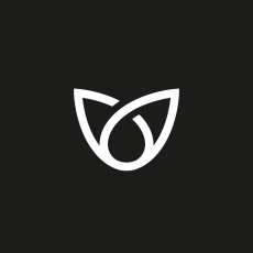 Basilico profile