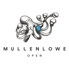 MullenLowe Open profile