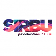 Sirbu Production profile