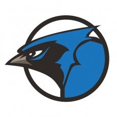 Blue Cardinal Group profile