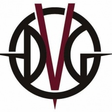 DVG Interactive profile