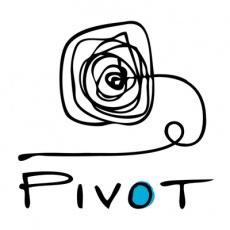 Pivot Marketing Inc profile