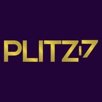 Plitz Corporation profile