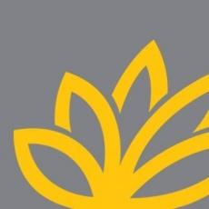 Brand Buddha profile