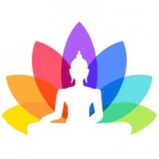 Fat Buddha Web Design Ltd profile