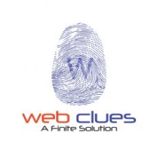 WebClues Infotech profile
