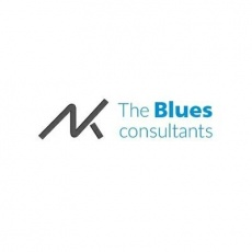 The Blues Consultants profile