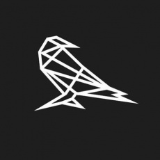 Rayvn Design profile