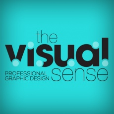 The Visual Sense profile