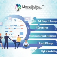 Limra Softech India Private Limited profile