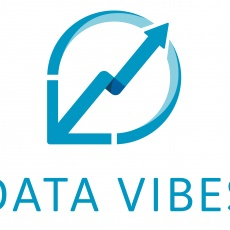 Data Vibes profile