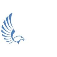 Falcon Digital Marketing profile
