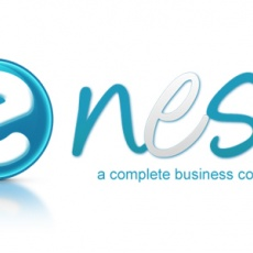 eNest Consultancy Services Pvt. Ltd. profile