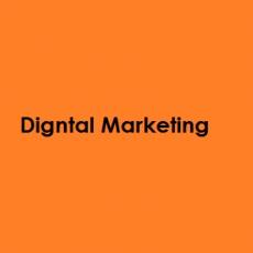 Digital-Marketing-Agency profile