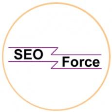 Seoforcetech profile