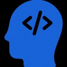 Top Developers LLC profile