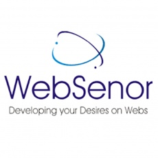 Websenor profile