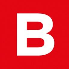 Brandiziac profile