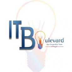 IT Boulevard profile