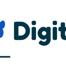 Digital Marketing Company in India - Digital Owl profile