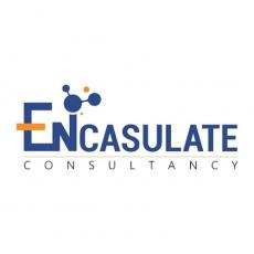 Encasulate Consultancy profile
