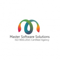 Master Software Solutions profile