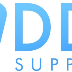 Virtual DDS Support profile