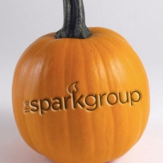 The Spark Group profile