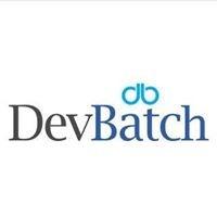 DevBatch profile