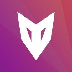 NETVOR profile