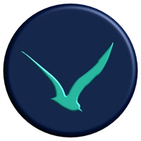 Seahawk Media Group profile