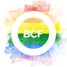 BCF Agency profile