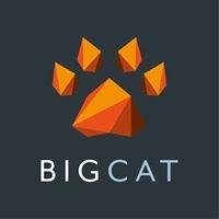 Big Cat Agency profile