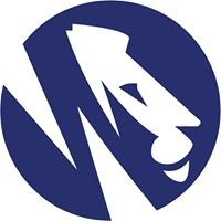 Brand Lions profile