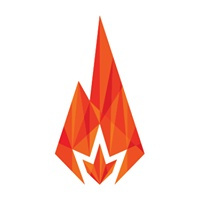Bonfire Marketing profile