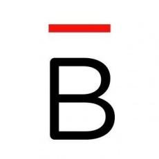 Buzz Marketing Networks profile