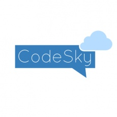 Codesky Media profile