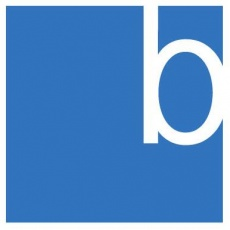 Berman Group profile